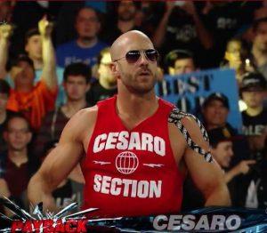 CesaroSection